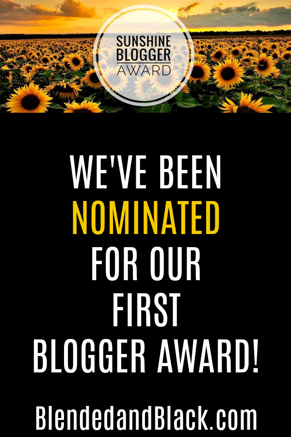 We've Been Nominated For Our 1st Blogger Award!